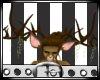 Buck&Doe Antlers M/F