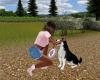 SC Frizbee and Husky