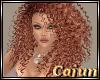 Ginger Cream Folami