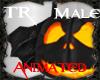 [TR]A!Pumpkin*Hallo^MaLe
