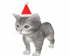 ☆Christmas cat