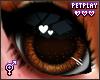 🍁 Fox Eyes 1