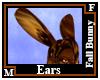 Fall Bunny Ears