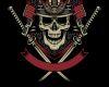 Samurai Helmet DEV