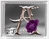 ~2T~ A Purple Rose