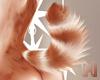 🅜 BONBON: tail 6