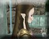 [K] Angel Zelda