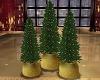 Christmas Jubilee Trees