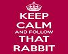 {JR} Follow the Rabbit