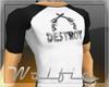 Destroy Raglan