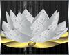 [SC]White&Gold Lotus