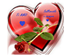 la rosa sul cuore