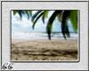 *CC* WV ~ Beach #1