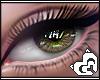 Mai ® S'EyesUnisex(L)~7