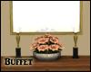 +Medium Buffet+