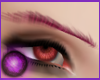 ☩ Brows of Magenta Red