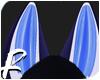 Midnight - Ears 3