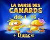 M►Dance Des Canard