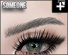 + sleek brows gray