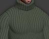 👕 Green Sweater