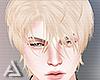 𝒜. High Blond Hair