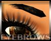 Big Eyebrows