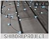 ShiboriProject . Light2