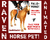 PALOMINO HORSE PET!