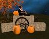 Pumpkin&Haystack Pose