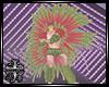 :XB: SAMBA DANCE M / F