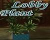~G~ Penthouse Plant