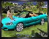 Top model cabriolet