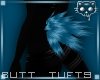 TuftsB Blue 1a Ⓚ