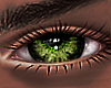 B! Spofy Eyes x