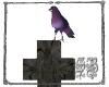 SB Purple Crow Memorial