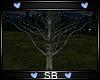 *SB* Tree V1