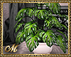 :mo: PLANT REQ