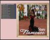 [M] Flamenca Store