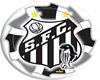 Top Santos Futebol Clube