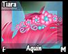Aquin Tiara