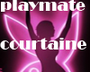 playmate courtaine
