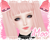 Jozie | Sweetpea