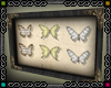 {D}Butterfly Frame 1