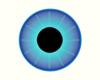 The Dan Eyes