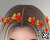 Leaves in Hair | Orange