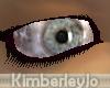 High Shine Eyes Gray