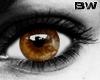 Hazel Unisex Eyes L