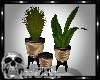CS VS Plants