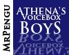 Athena's Boy VB