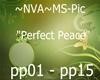 ~NVA~ MS~PerfectPeace